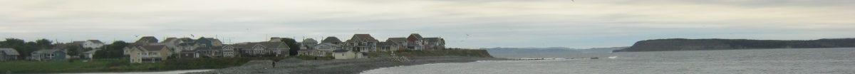 Newfoundland Labrador Websites/Blogs